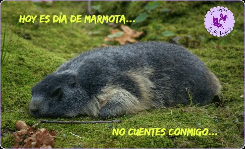 Dia Marmota