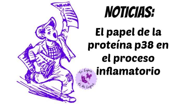 El papel de la proteína p38 en el proceso inflamatorio