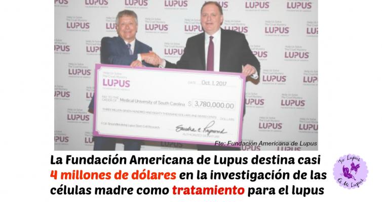 3,8 millones de dólares para estudiar las celulas madre en lupus
