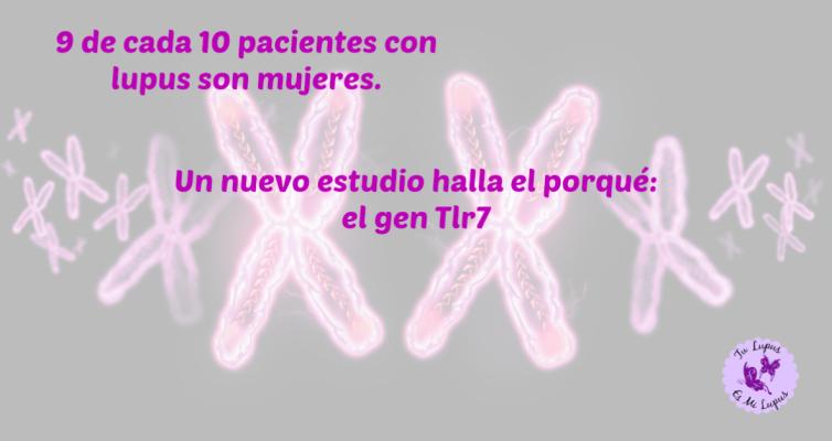 El gen Tlr7 es la causa de que haya más mujeres que hombres con lupus